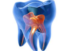 Лечение каналов зубов в Запорожье (эндодонтия)